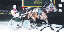 Muscles Yankee, 1997 champion two- year-old trotting colt