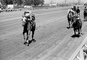 South Ocean winning the 1970 Oaks (Photo by Michael Burns)