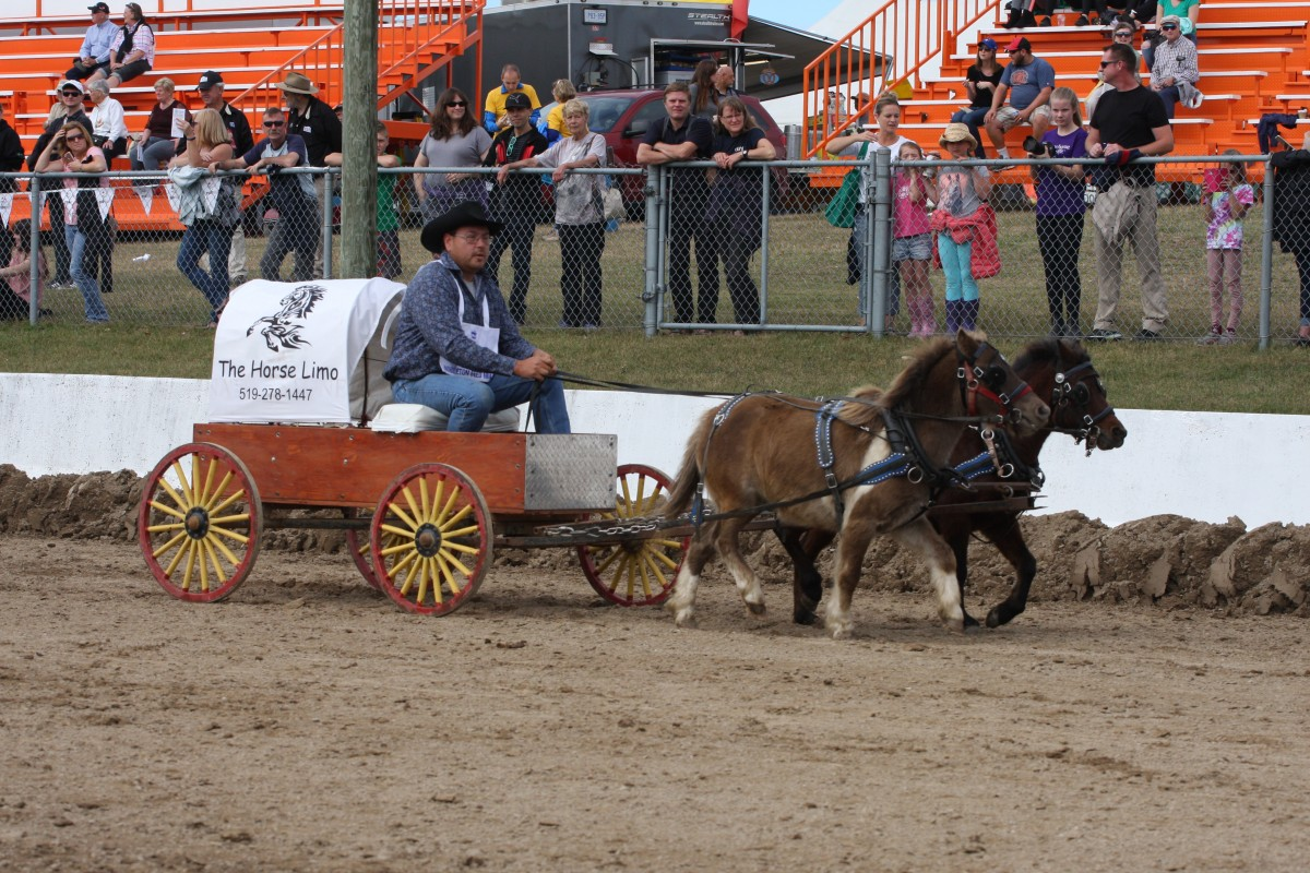 Mini Chuckwagon